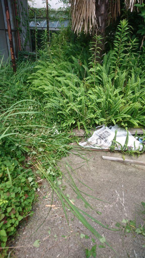 丸亀市垂水町でお仏壇の回収 施工事例紹介
