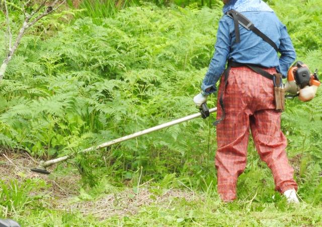 高松市で草刈りにかかる料金相場は?追加料金や業者選びのコツまで解説